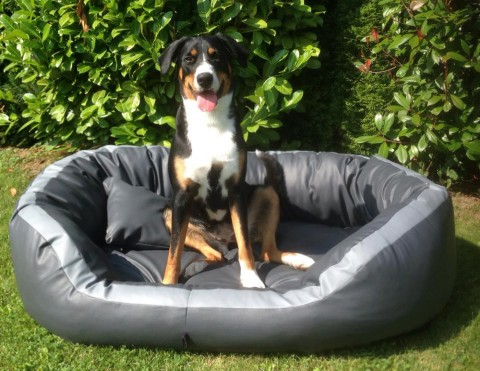 Orthopädisches Hundebett PEPPER L 110 cm Kunstleder Graphit