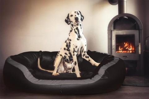 Orthopädisches Hundebett PEPPER XL 135 cm Kunstleder Schwarz