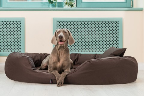 Orthopädisches Hundebett SAMMY POLYESTER-Strong Visco