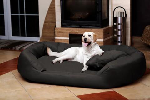 Orthopädisches Hundebett SAMMY VISCO L 100 cm Polyester 600D Graphit