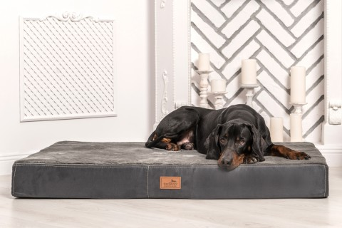 Orthopädische Hundematratze STUART ORTHO PLUS  High-Tech-Velours / Plüsch
