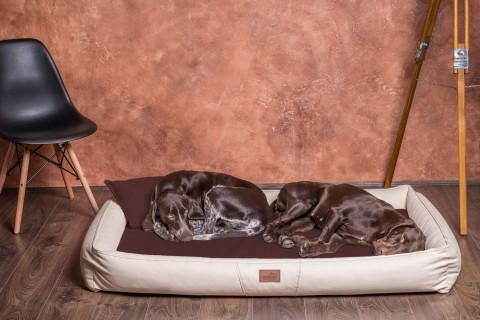 Charmant Weiche Orthopädische Premium Hundematratze CLIFFORD U003cbru003eSoft L 100 Cm  Kunstleder High