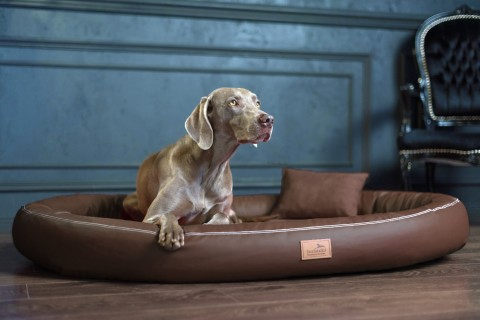 Weiche orthopädische Premium-Hundematratze GILBERT<br>Anti-Haar XXL 150 cm Kunstleder | 01 Braun XXL | Braun