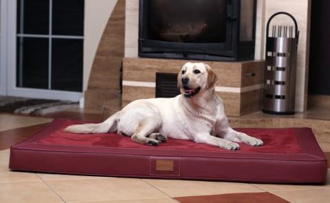 Orthopädische Hundematratze OSCAR VISCO XXL 150 cm Velours Kunstleder Bordeaux XXL | Bordeaux