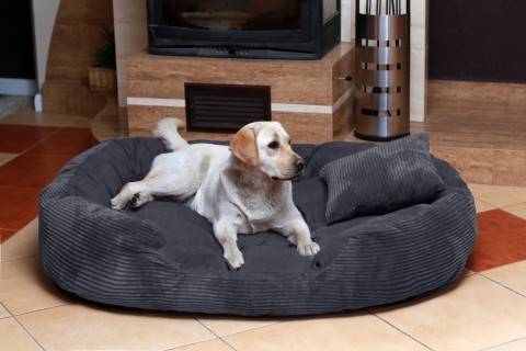 Hundebett PHILIP XL 110 cm Cord-Velours Graphit XL | Graphit