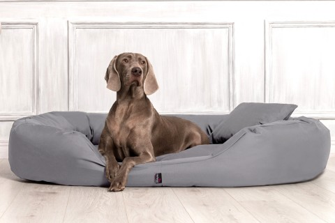 Hundebett SAMMY XXL 140 cm Polyester 600D Grau XXL | Grau