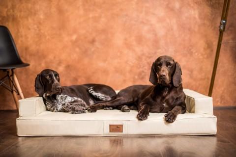 Orthopädisches Hundesofa GIBSON VISCO XXL 150 cm Kunstleder Creme