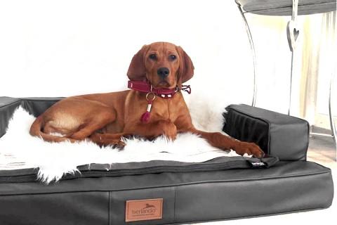 Orthopädisches Hundesofa GIBSON VISCO XXL 150 cm Kunstleder Graphit