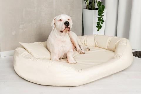Orthopädisches Hundebett SAMMY KUNSTLEDER Visco Antihaar