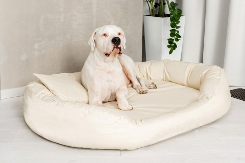 Orthopädisches Hundebett SAMMY VISCO L 100 cm ANTI-HAAR Kunstleder Creme L | Creme