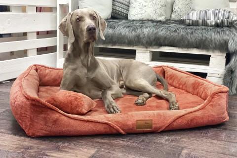 Orthopädisches Hundebett TYSON XL+ | Terracotta