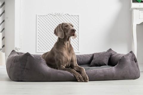 Orthopädisches Hundebett PLUTO VISCO Velours