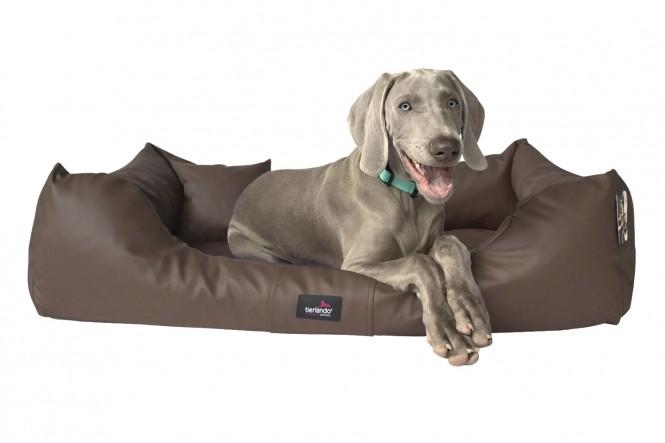 MILEN | Orthopädisches Hundebett M+ | Braun