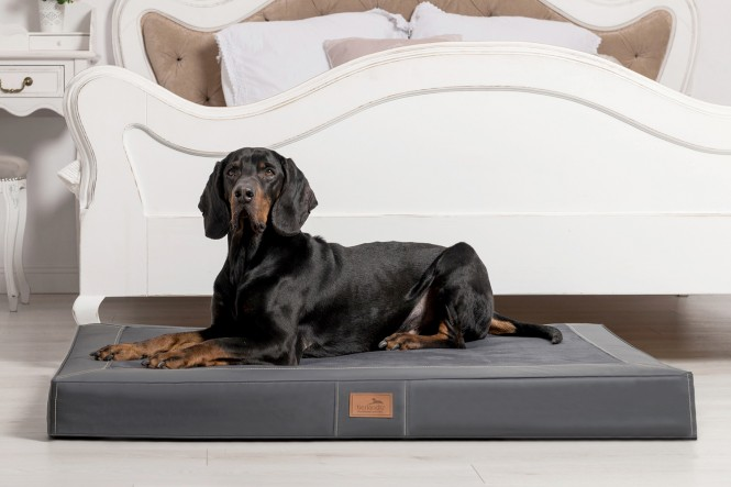 OSCAR VIP | Orthopädische Hundematratze L | Graphit