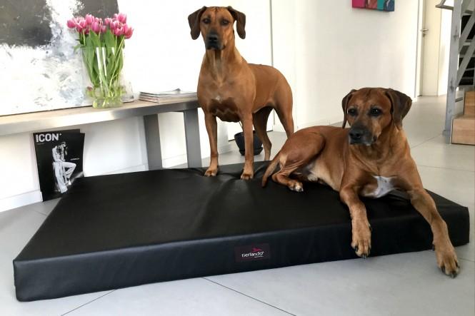 Orthopädische Hundematratze ALICE ALLERGIKER M 80 cm Kunstleder Schwarz M   Schwarz