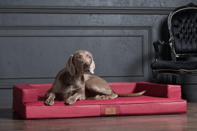 GIBSON   Orthopädisches Hundesofa