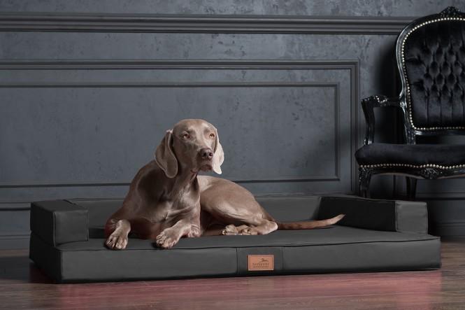 GIBSON | Orthopädisches Hundesofa XL | Graphit Grau