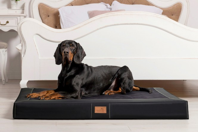 OSCAR VIP | Orthopädische Hundematratze L | Schwarz