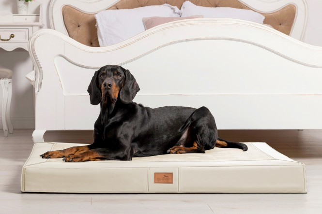 OSCAR VIP | Orthopädische Hundematratze - L | Creme
