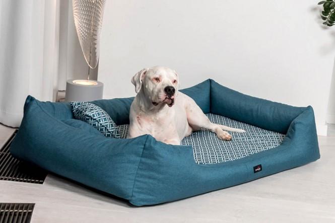 Orthopädisches Hundebett ELLEN M 90 cm melierte einfarbige Umrandung und exklusiv gemusterte Liegefläche | 38 Petrol - M+ | Petrol