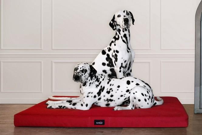 ALICE ANTIRUTSCH | Orthopädische Hundematratze - M | Bordeaux-Rot