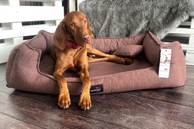 SCARLETT | Orthopädisches Hundebett M+ | Nude