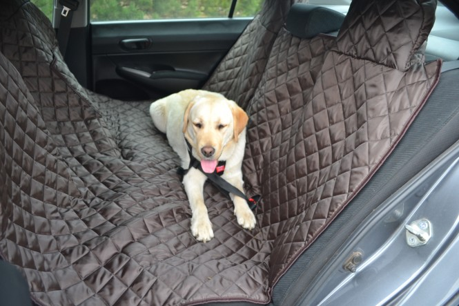 Autoschondecke, Autoschutzdecke, Hundedecke, 160 x 140 cm, Braun