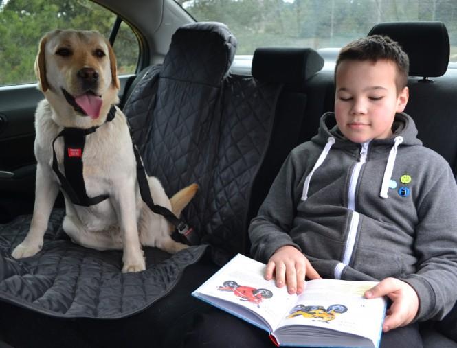 Autoschondecke, Autoschutzdecke, Hundedecke, mit Reißverschluß teilbar, 160 x 140 cm, Graphit