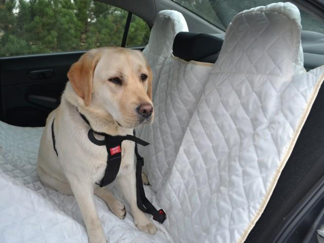 Autoschondecke, Autoschutzdecke, Hundedecke, 200 x 140 cm, Creme