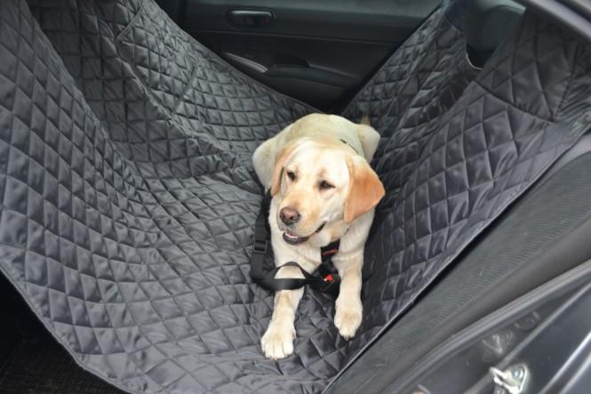 Autoschondecke, Autoschutzdecke, Hundedecke, 160 x 140 cm, Graphit