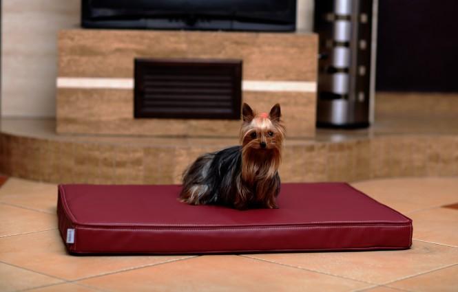 CARLOS | Orthopädische Hundematratze M | Bordeaux-Rot