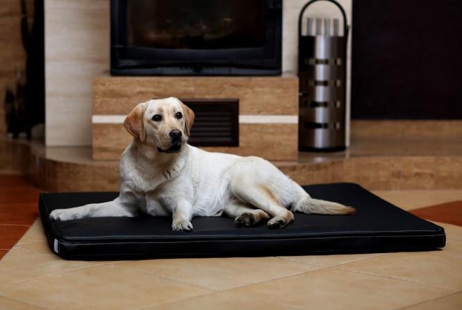 Orthopädische Hundematratze CARLOS VISCO L 100 cm Kunstleder Schwarz - L | Schwarz