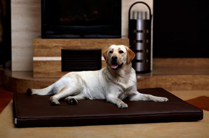 Orthopädische Hundematratze CARLOS VISCO XL 120 cm Kunstleder Braun - XL | Braun