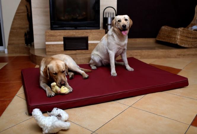 Orthopädische Hundematratze CARLOS VISCO XXL 150 cm Kunstleder Bordeaux-Rot - XXL | Bordeaux-Rot