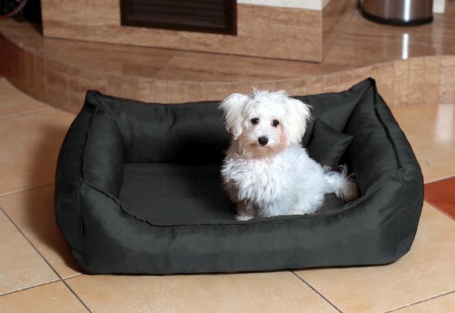 Orthopädisches Hundebett DONALD Visco M 80 cm Polyester 210D Graphit M | Graphit