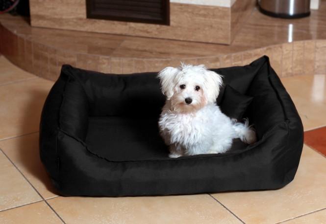 DONALD | Orthopädisches Hundebett M | Schwarz