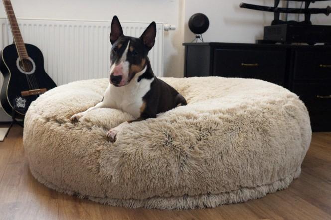 DOGNUT | Orthopädisches Hundebett