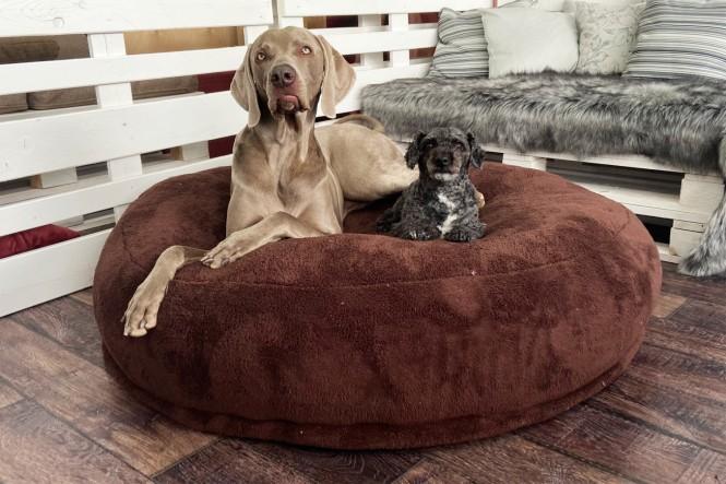 EINZELSTÜCK | Dognut Hundebett Orthopädisch Braun Velours AIRFLAKE System 110cm Ø