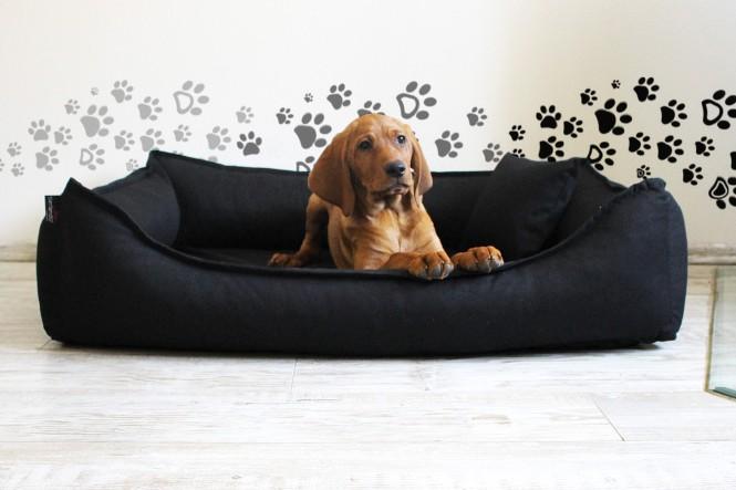 DONALD | Orthopädisches Hundebett