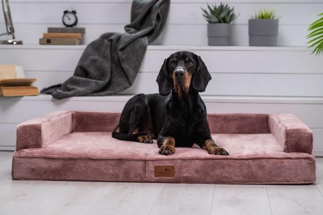 EINZELSTÜCK | Orthopädisches Hundesofa ESTELLE