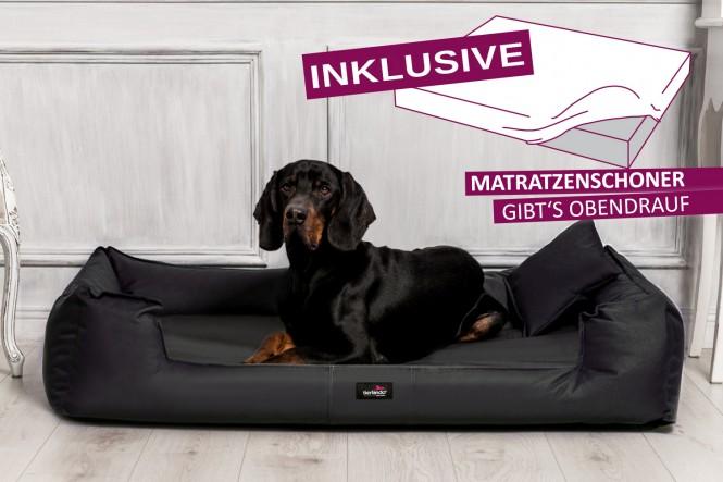 GOOFY | Orthopädisches Hundebett M+ | Schwarz