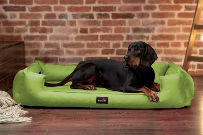 GOOFY | Orthopädisches Hundebett M+ | Hellgrün