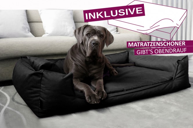 GOOFY | Orthopädisches Hundebett - XL+ | Schwarz