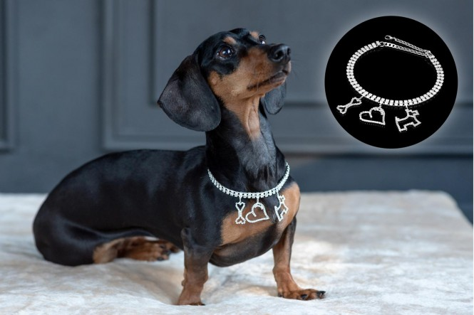 Halskette mit Strass-Steinen | Design 05 Knochen Herz Hund