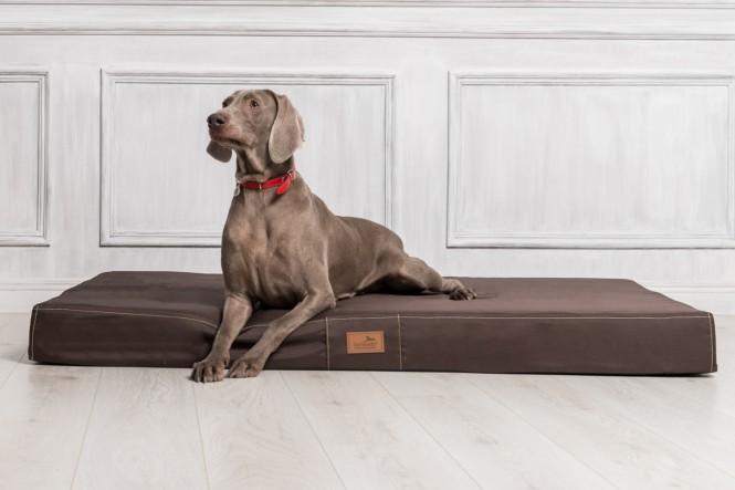 Hundematratze HUGO BASIC M 80 cm Polyester 210D Braun - M | Braun