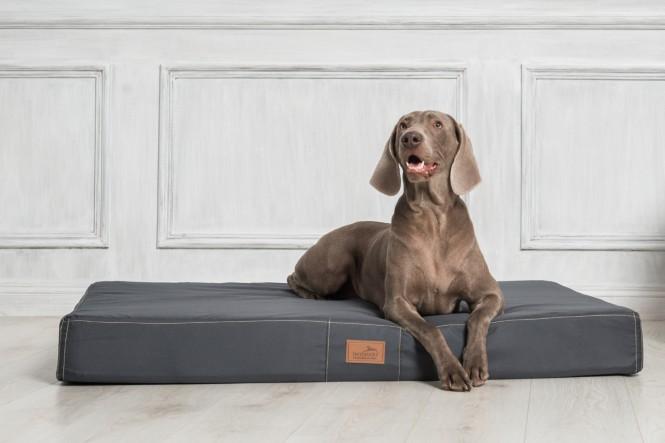 HUGO | Basic Hundematratze