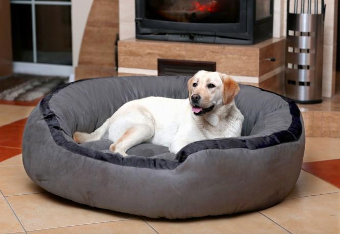 Hundebett LANA M 80 cm Velours Grau M | Grau