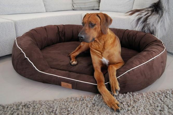 Orthopädisches Hundebett MARLON VISCO PLUS L 100 cm Velours Braun - L | Braun