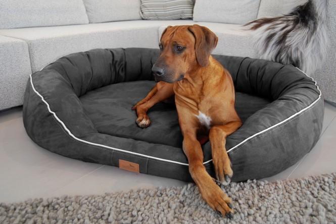 Orthopädisches Hundebett MARLON VISCO PLUS XXL 140 cm Velours Graphit - XXL | Graphit