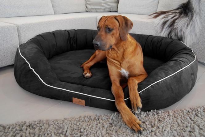 Orthopädisches Hundebett MARLON VISCO PLUS M 85 cm Velours Schwarz M | Schwarz